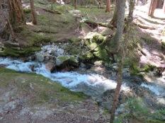 Happy Creek1