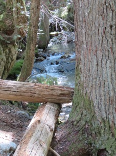 Happy Creek4