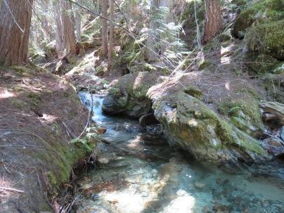 Happy Creek7